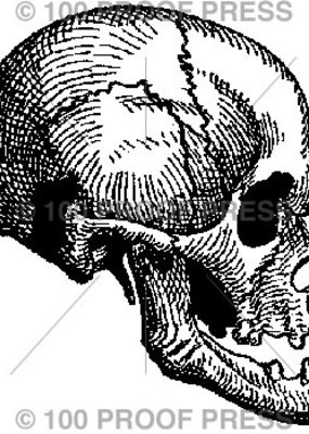 100 Proof Press Stamp Small Skull