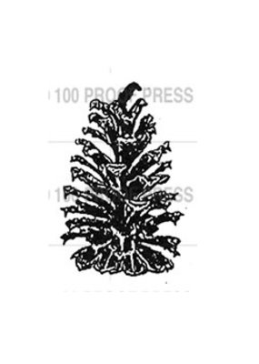 100 Proof Press Stamp Tiny Pinecone