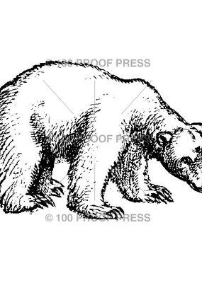 100 Proof Press Stamp Polar Bear