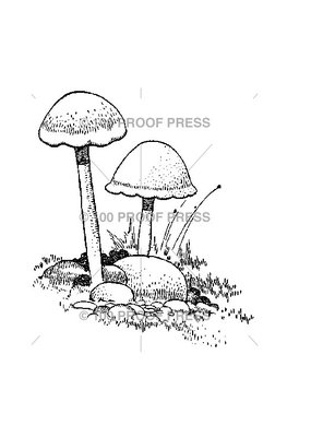 100 Proof Press Stamp Mushrooms in Grass