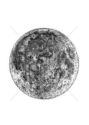 100 Proof Press Stamp Moon