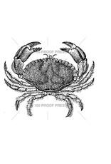 100 Proof Press Stamp Blue Crab