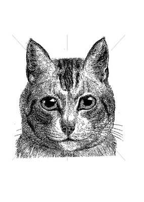 100 Proof Press Stamp Cat Face