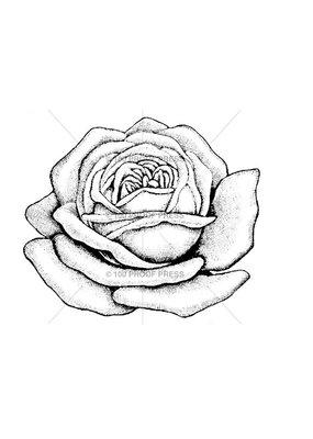 100 Proof Press Stamp Large Rose Blossom