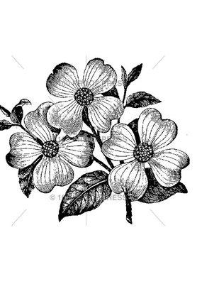 100 Proof Press Stamp Three Dogwood Flowers