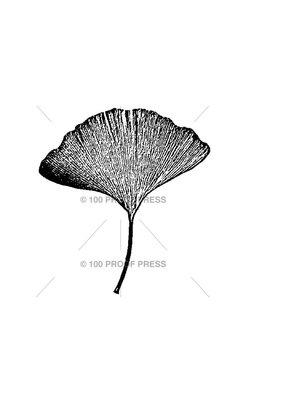 100 Proof Press Stamp Short Gingko Leaf