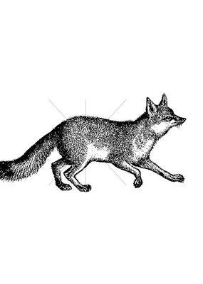 100 Proof Press Stamp Fox