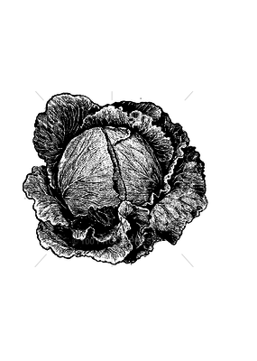 100 Proof Press Stamp Head of Cabbage