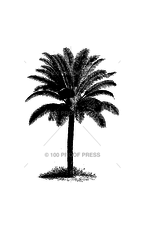 100 Proof Press Stamp Palm Tree