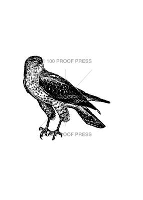 100 Proof Press Stamp Hawk