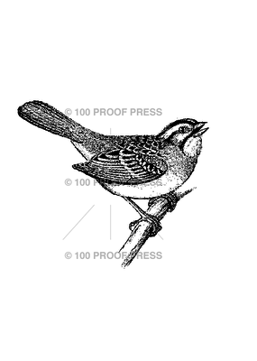 100 Proof Press Stamp Songbird on a Branch