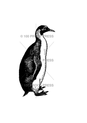 100 Proof Press Stamp Smooth Headed Penguin