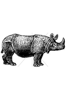 100 Proof Press Stamp Rhino