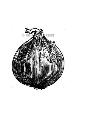 100 Proof Press Stamp Onion