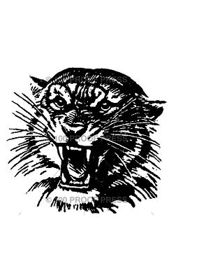 100 Proof Press Stamp Tiger Head