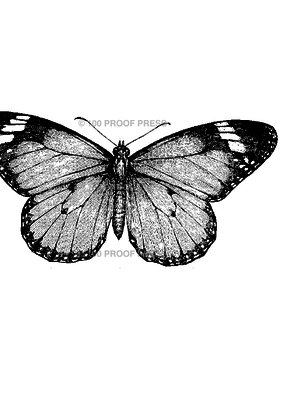 100 Proof Press Stamp Monarch Butterfly