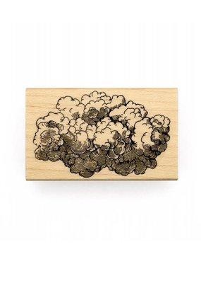 Leavenworth Jackson Stamp Cloud