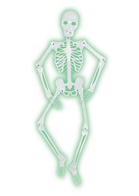 Beistle Mr. Bones-a-Glow Skeleton 5'