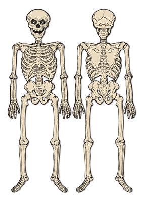 Beistle Vintage Halloween Jointed Skeleton