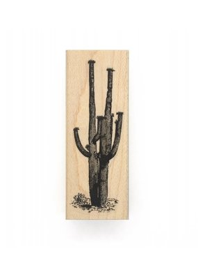 Leavenworth Jackson Stamp Saguaro