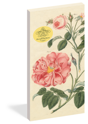 John Derian Paper Goods Notepad John Derian Everything Roses