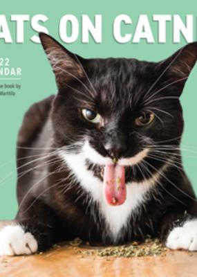 Workman 2022 Wall Calendar Cats On Catnip