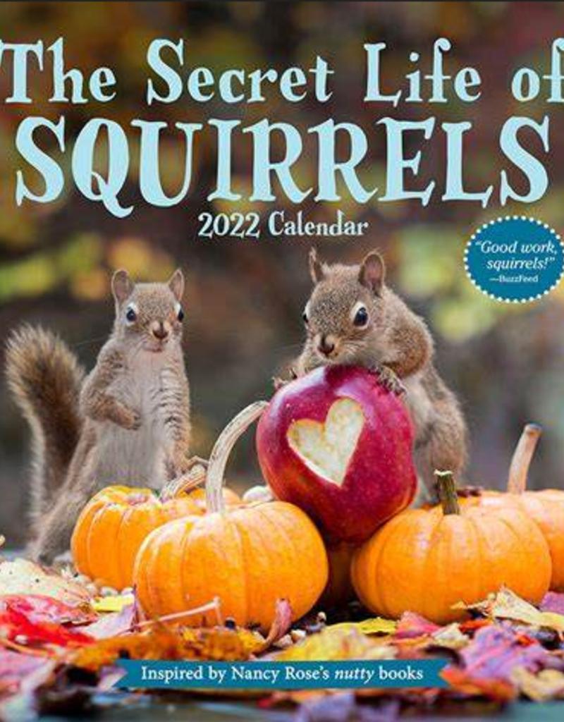 Workman 2022 Wall Calendar The Secret Life Of Squirrels