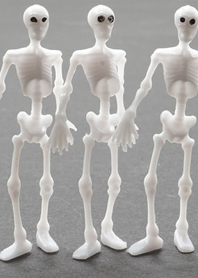 Handley House Mini 2 Inch Skeletons