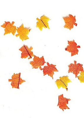 Handley House Mini Fall Leaves