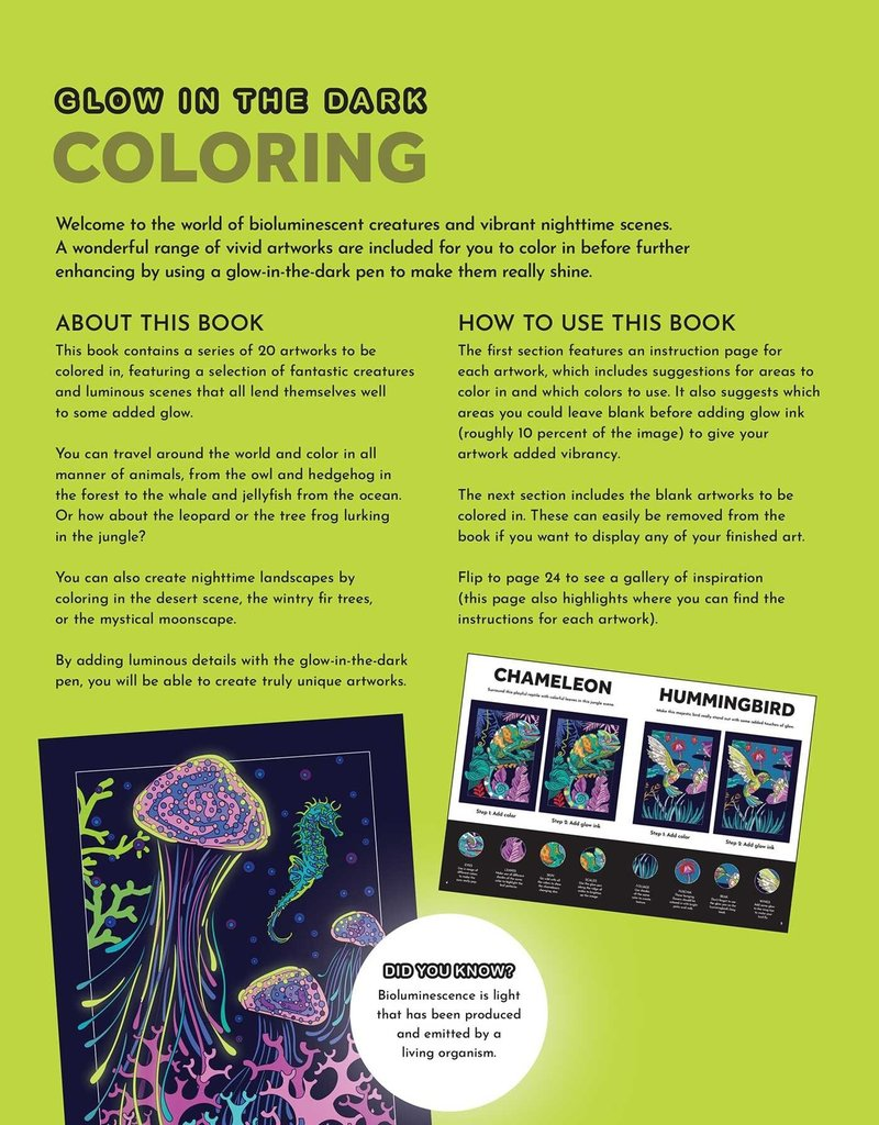 Simon & Schuster Glow in the Dark Coloring Book