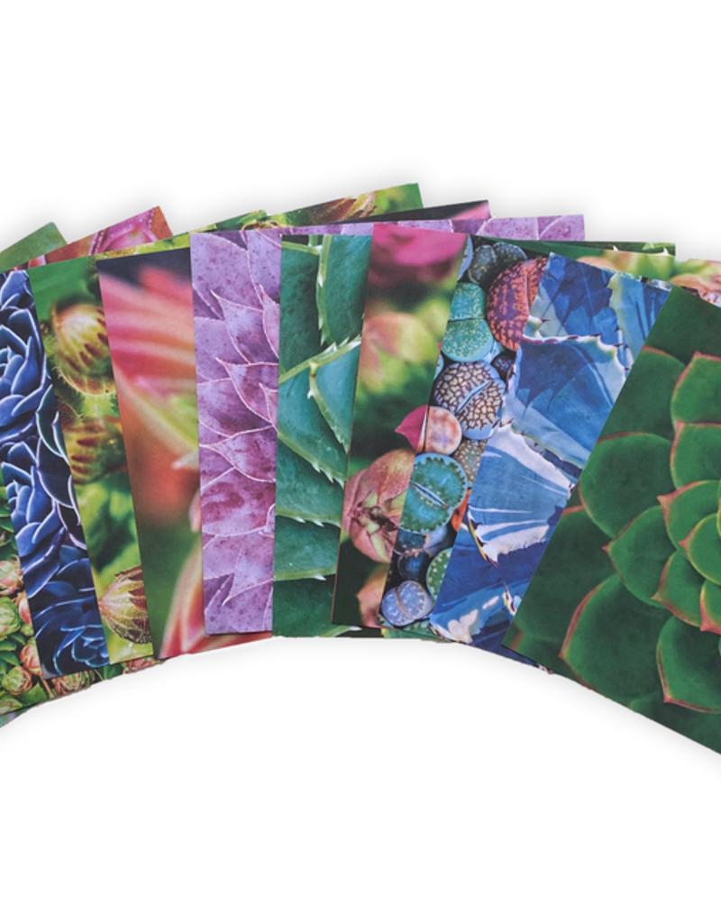 Tuttle Publishing Origami Paper Succulents 500 Sheets