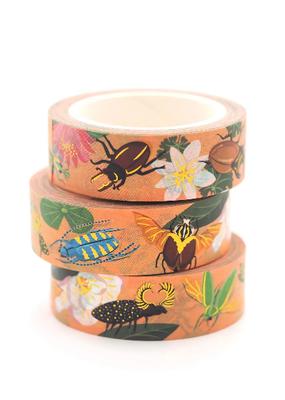 Shoal Washi Beetle