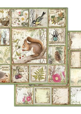 Stamperia 12 x 12 Decorative Paper Framed Squirrel