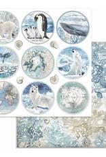 Stamperia 12 x 12 Decorative Paper Rounds Arctic Antarctic