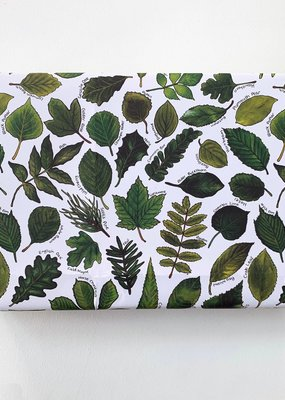 Alexia Claire Ltd. Wrapping Paper Sheet Leaves of Britain