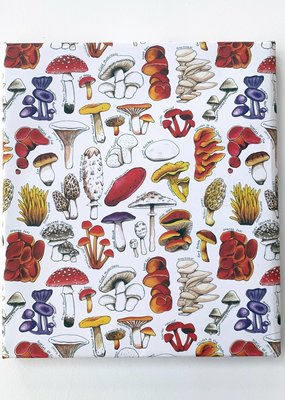 Alexia Claire Ltd. Wrapping Paper Sheet Mushrooms of Britain