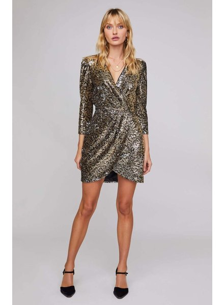 Leopard  Sequins Dress