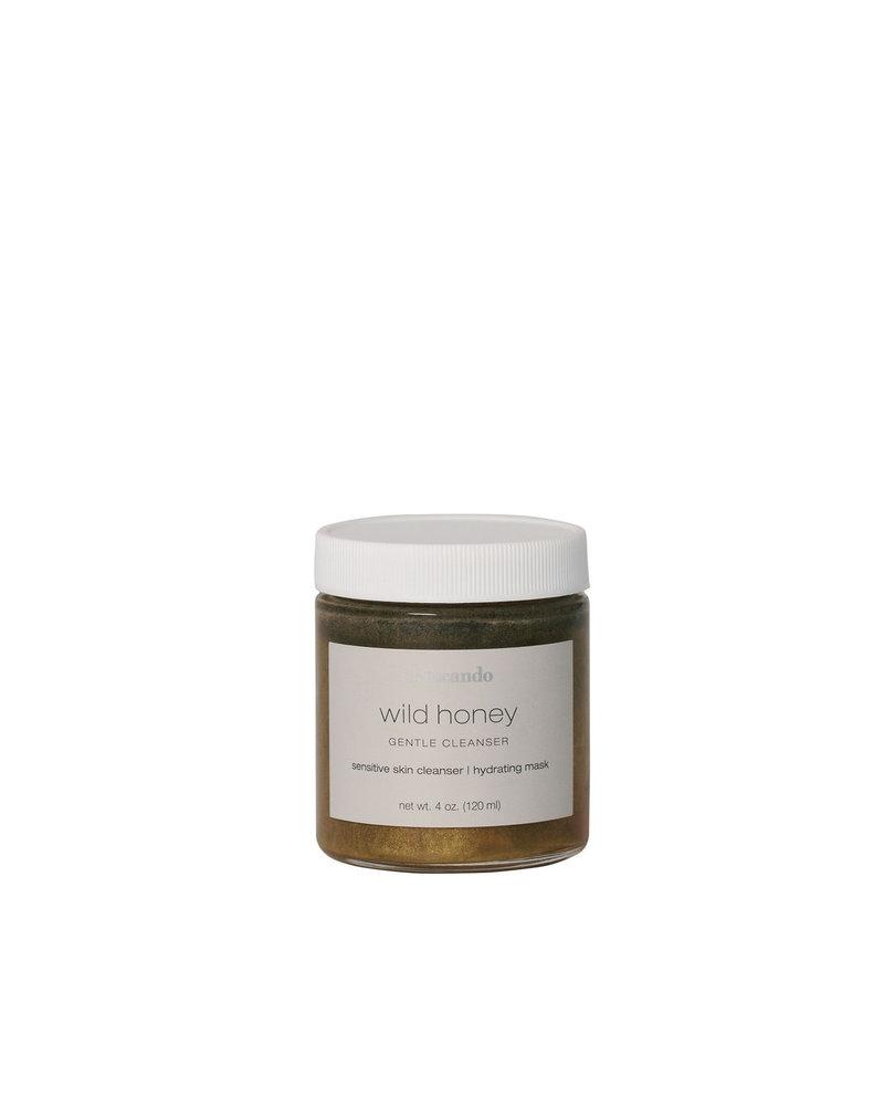 Wild Honey   Skin Detox Mask 4 oz