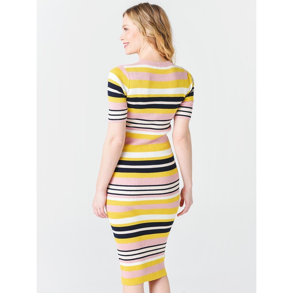 Frame Frame Baja Stripe Dress