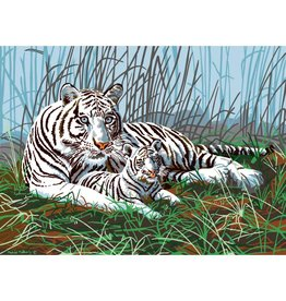 R&L Painting by Numbers - White Tiger and cub