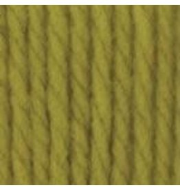 Bernat Bernat Softee Chunky Grass