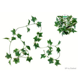 MultiCraft Floral Greenery: 6Ft Ivy Vine Green D) Holland Ivy