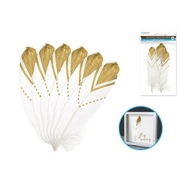 "Feather Craft: 6""-8"" Designer Printed x6 A) White w/Gold Foil Arrow"