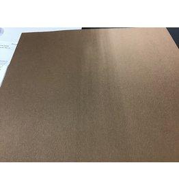 Treasuremart 12X12 Textured Woodgrain Cardstock, Chestnut