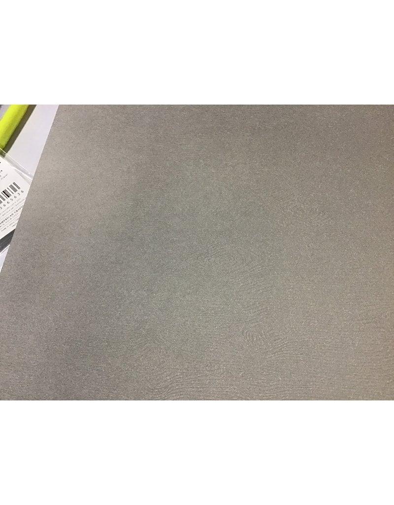 Treasuremart 12X12 Textured Woodgrain Cardstock, Nickel