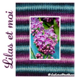 Biscotte Yarns Biscotte Yarns SELF-STRIPING yarn - Bis-Sock My Lilacs