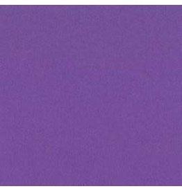 Treasuremart Smoothies Cardstock, Grape Delight