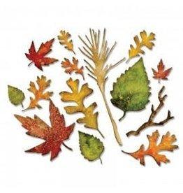 Tim Holtz Thinlits Die Set, Fall Foliage 14PK