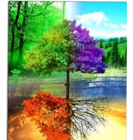 Diamond Painting - 4 Seasons Vibrant Colors 40cm x53cm