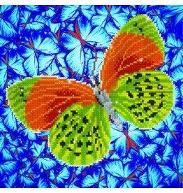 "Diamond Dots Diamond Embroidery Facet Art Kit 12"" X 12"" Flutterby Earth"
